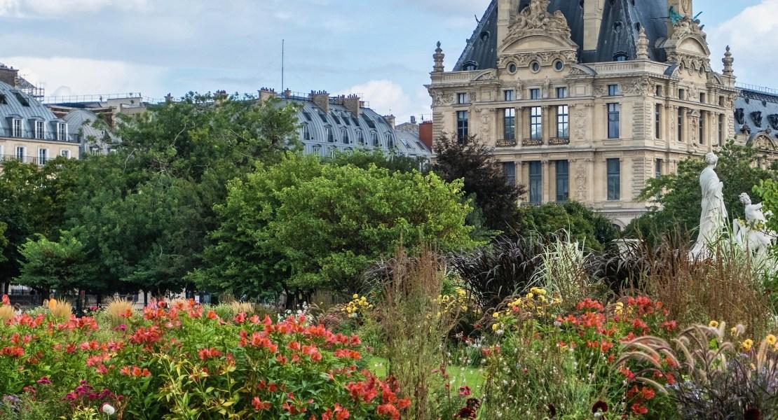 september flowers in the tuileries