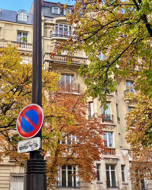 changing leaves paris 16