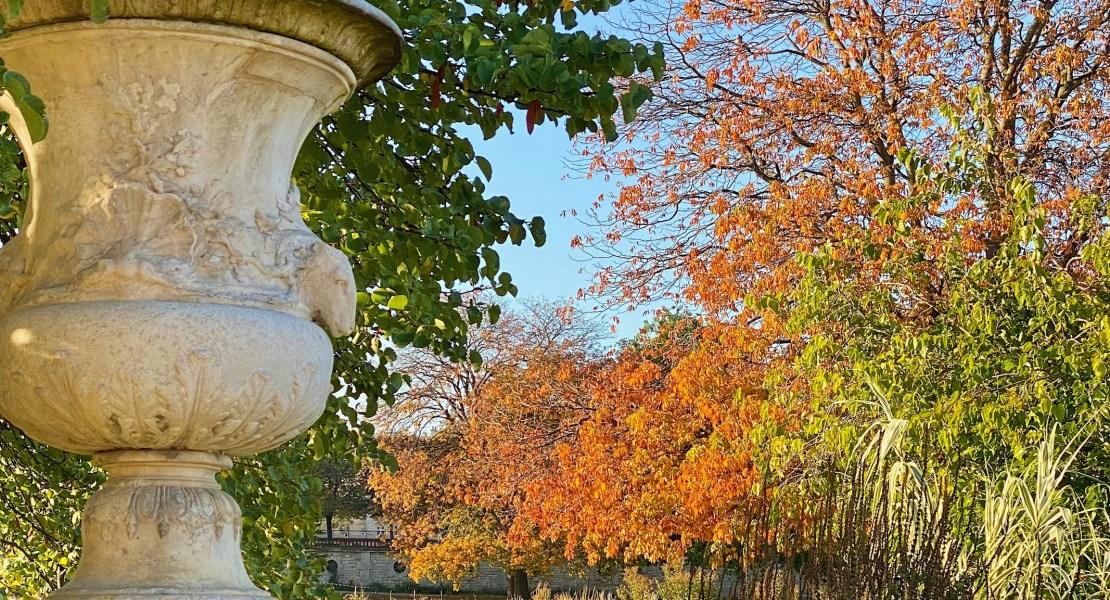 orange leaves in the tuileries featured weekend links week 42