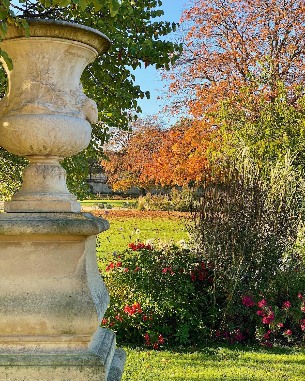 orange leaves in the tuileries weekend links week 42