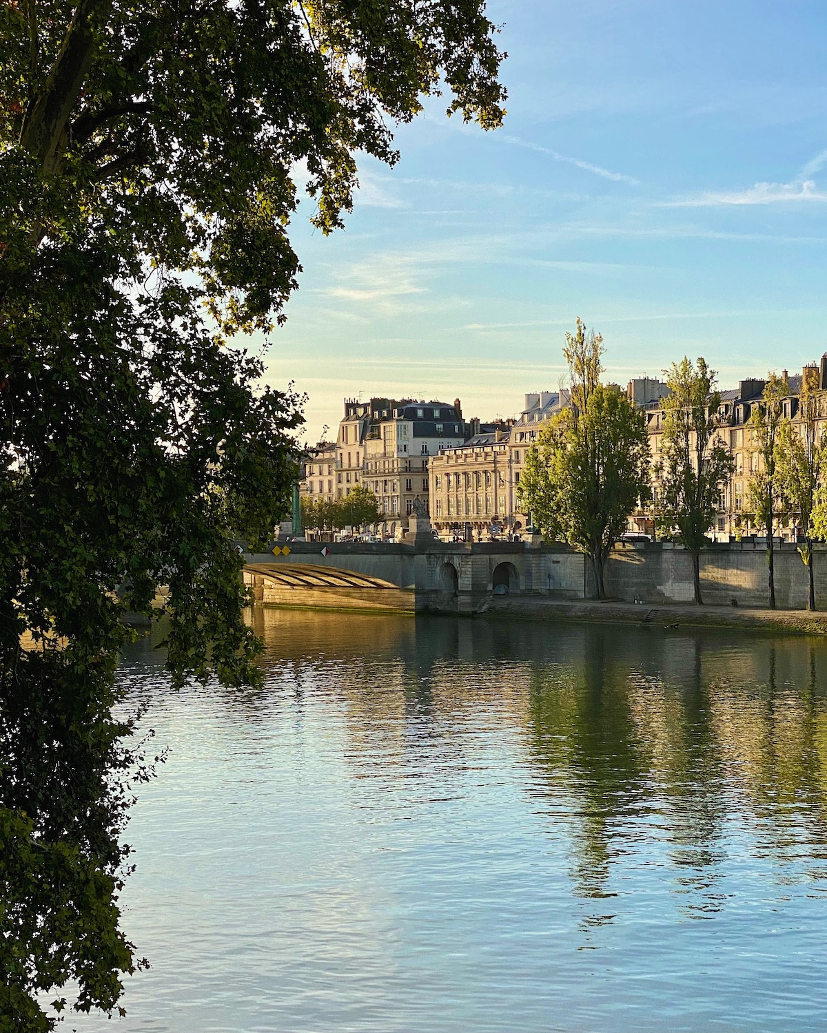 view of the seine from pont royal